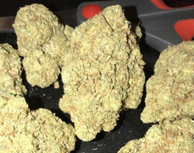 High Grade Medical Marijuana, Hash, BHO, HEMP OILS, THC OILS
