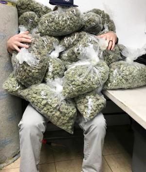 fredrick420 Profile | LeafedIn org | Cannabis in Passaic , NJ