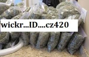 weeed | Cannabis Menus By tatahmike | LeafedIn org | Cannabis in